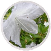 Flower Laced With Rain Drops Round Beach Towel
