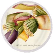 Flower Of The Banana Tree  Round Beach Towel