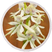 Flower - Orchid - A Gift For You  Round Beach Towel