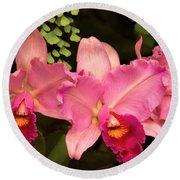Flower - Orchid -  Cattleya - Magenta Splendor Round Beach Towel