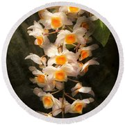 Flower - Orchid - Dendrobium Orchid Round Beach Towel