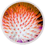 Flower Power 1358 Round Beach Towel