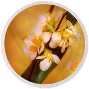 Flower - Sakura - A Touch Of Spring Round Beach Towel