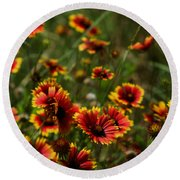 Texas Indian Blanket -  Luther Fine Art Round Beach Towel
