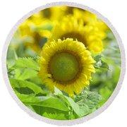 Flower - Texas Sunflower Field 1 - Luther Fine Art Round Beach Towel