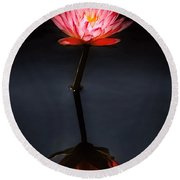 Flower - Water Lily - Nymphaea Jack Wood - Reflection Round Beach Towel
