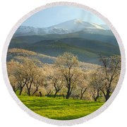 Flowering Almond At The Mountains Round Beach Towel