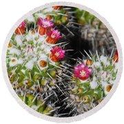 Flowering Cactus Round Beach Towel