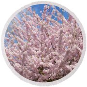 Flowering Cherry Tree Round Beach Towel
