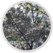 Flowering Cherry - White Round Beach Towel