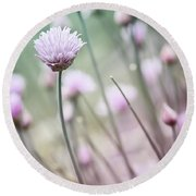Flowering Chives I Round Beach Towel
