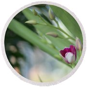 Flowering  Orchid Stem Round Beach Towel