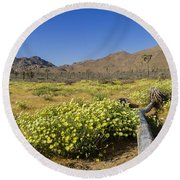 Flowers At The Headstone Round Beach Towel