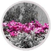Flowers Dallas Arboretum V17 Round Beach Towel