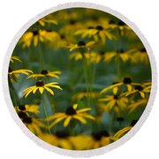 Flowers In The Fields Round Beach Towel
