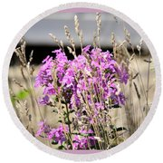 Flowers In The Grass 8891 Round Beach Towel