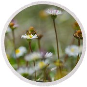 Flowers In The Hight Mountains. Round Beach Towel