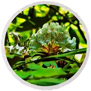 Flowers In The Woods Round Beach Towel