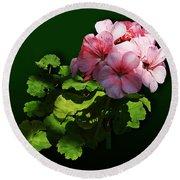 Flowers - Pale Pink Geranium Round Beach Towel