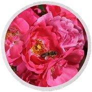 Flowers-roses-pink-bee Round Beach Towel
