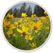Flowers That Are Wild Round Beach Towel