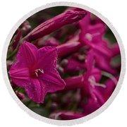 Flowers-waimea Arboretum  Round Beach Towel