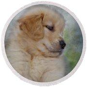 Fluffy Golden Puppy Round Beach Towel by Susan Candelario