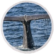 Flukes Of A Sperm Whale 2 Round Beach Towel by Heiko Koehrer-Wagner