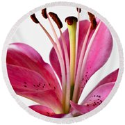 Fluttering Lily Round Beach Towel