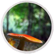 Fly Agaric Round Beach Towel