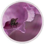 Fly On A Rhododendron Round Beach Towel