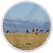 Flying Canadian Geese Colorado Rocky Mountains 1 Round Beach Towel