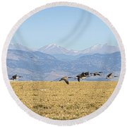 Flying Canadian Geese Rocky Mountains 2 Round Beach Towel