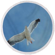 Flying Feathered Friend Round Beach Towel
