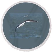 Flying On A Breeze Round Beach Towel