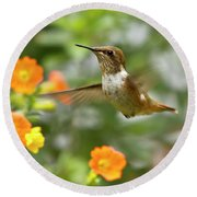 Flying Scintillant Hummingbird Round Beach Towel