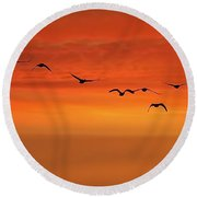 Flying South  Round Beach Towel by Cindy Greenstein