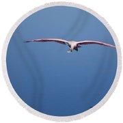 Flying Spoonbill Round Beach Towel