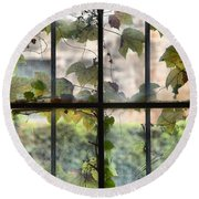 Fog Ivy And Plate Glass Round Beach Towel