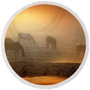 Foggy Morning Pasture Time Round Beach Towel