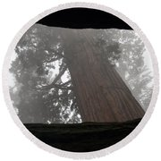Foggy Morning Sequoias Round Beach Towel