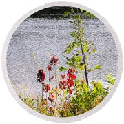 Foliage Along Iowa River Iowa City Ia Round Beach Towel