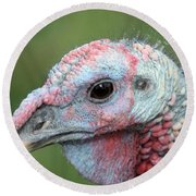Fontana Turkey Portrait Round Beach Towel