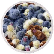 For Sale Baby Chicks Round Beach Towel