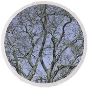 For The Love Of Trees - 2  Round Beach Towel
