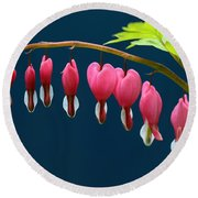 Bleeding Hearts For Your Love Round Beach Towel