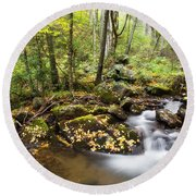 Forest And Stream Round Beach Towel