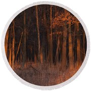 Forest At Sunset Round Beach Towel