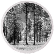 Forest Black And White Round Beach Towel