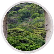 Forest Canopy Through The Window Of The Ruins Round Beach Towel